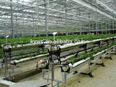 Substrates Hydroponic Greenhouse For Tomato Cucumbers Peppers Lettuce Photo, Detailed about Substrates Hydroponic Greenhouse For Tomato Cucumbers Peppers Lettuce Picture on Alibaba.com.