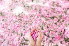 Cherry Blossoms :: Maxi dress