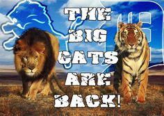 Detroit Lions and Detroit Tigers