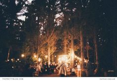 Dream forest wedding