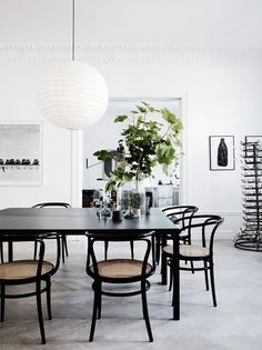 Bentwood Chairs in Modern Dining Rooms Dining Room Inspiration, Interior Design Inspiration, Interior Ideas, Modern Interior, Sweet Home, Black And White Dining Room, Black White, Black Table, Black Chairs