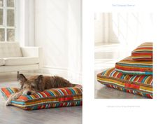 Company Cotton Stripe Dog Bed Cover