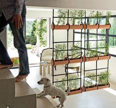 jardins feitos com bambu - Pesquisa Google