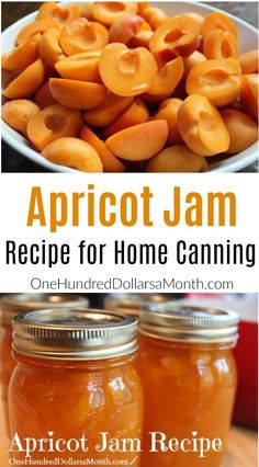 Jam is so simple and easy to make, sometimes I find myself getting carried away {as if that were even possible – ha}. Apricot jam is one of my favorites, you don't have to deal with any of the seeds like berry jams, and you only need 3 simple ingredients. Apricot Jam Recipe With Pectin, Apricot Jelly Recipe, Apricot Jam Recipes, Apricot Butter Recipe, Jelly Recipes, Fruit Recipes, Drink Recipes, Canning Apricots, Jam And Jelly