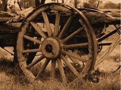 Wagon-Wheel-Chandeliers-Cast-Horn-Designs.png