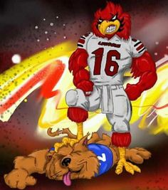 UL gonna beat those Cats University Of Louisville Basketball, Louisville Cardinals Basketball, Cardinals Football, Basketball Quotes, Football And Basketball, Ky Derby, My Old Kentucky Home, American Football