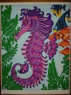 Auteur: Carole Pasche-Hurni - Revue: Coloriage Évasion n°11 - Éditions MEGASTAR® France. Carole, Seahorses, Rooster, France, Coloring Pages, Animaux, French, Chicken