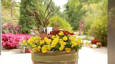 Cool Wave Pansies make great-looking mixed containers for your patio www.wave-rave.com