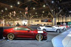 2015 Ford Mustangs at SEMA