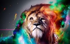 Fresh android Wallpaper Animal Art - Android Wallpaper Animal Art Luxury Cool Backgrounds Hd Free Cool Pics In 2019 Lion Hd Wallpaper, Images Wallpaper, Animal Wallpaper, Cool Wallpaper, Heaven Wallpaper, Wallpaper Designs, Beautiful Wallpaper, Colorful Wallpaper, Lion Pictures