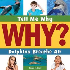 Tell Me WHY? Dolphins Breathe Air by Susan Heinrichs Gray. Young children are naturally curious about animals. Tell Me Why Dolphins Breathe Air offers answers to their most compelling questions about how these mammals can swim. Age-appropriate explanations and appealing photos encourage readers to continue their quest for knowledge. 05-31-2015