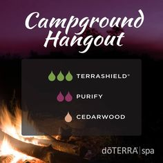Here you can learn about doTERRA Terrashield essential oil uses. I explain all about Terrashield and all the ways you can use it and how to use it. Cedarwood Essential Oil, Essential Oil Uses, Doterra Essential Oils, Oil Cleansing Method, Diffuser Recipes, Essential Oil Diffuser Blends, Essentials, Natural Oils, Natural Health