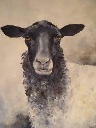 Bildresultat för akvarell får