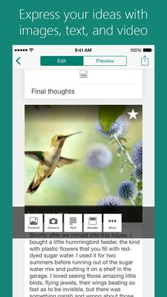 Office Sway by Microsoft Corporation