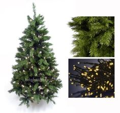 GREEN ARTIFICIAL CHRISTMAS TREE 6FT / 180CM + 10 METRE 100 LED FAIRY TWINKLE LIGHTS IN WARM WHITE ** HIGH QUALITY XMAS TREE PACKAGE - IDEAL FOR CHRISTMAS DECORATIONS, XMAS LIGHTS, ETC **: Amazon.co.uk: Kitchen & Home
