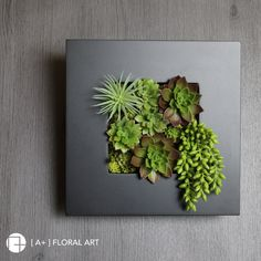 Moss Wall Art, Moss Art, House Plants Decor, Plant Decor, Succulent Wall Planter, Fleur Design, Plant Wall, Plant Design, Planting Succulents