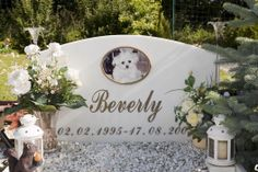 GERMANY. Munich. A Dog Cemetry. 2009. by Martin Parr.