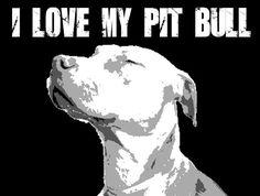 I LOVE ALL PITBULLS!!!