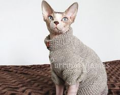 Sphynx clothes, sphynx sweater, cat clothes, cat sweater, sweater for sphynx, sweater for cat, sphynx cat clothes, cat lover gift, sphynx