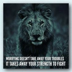 Strength quote with lion