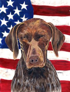 USA American Flag with German Shorthaired Pointer Flag Canvas House Size