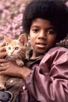 Chats des célébrités  79 /117 Michael Jackson et son chat roux