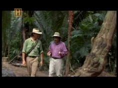 Interesante video sobre las pirámides mayas ya antes mencionadas.