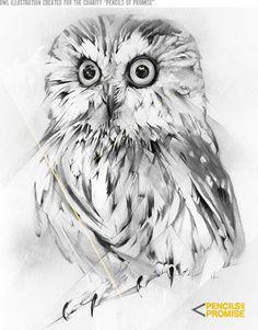 owl - Alexis Marcou