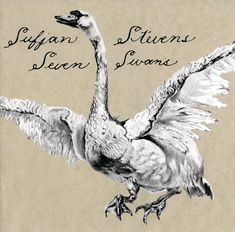 """Sufjan Stevens. His music is gentle and pure. It's so good sometimes I can't handle it it makes me cry. The definition of indie folk music, the soul of all music genres. """"This Dress Looks Nice On You"""" """"To Be Alone With You""""  """"Casimir Pulaski Day"""" """"Should've Known Better"""""""