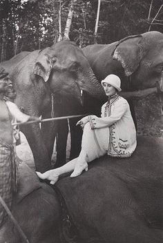 Anna Pavlova traveled world-wide. while in China she mastered 37 pirouettes on the back of a MOVING ELEPHANT - seated on an elephant during her tour of India, 1923 Great Photos, Old Photos, Antique Pictures, Dance Art, Ballet Dance, History Of Dance, Russian Ballet, Dance Photography, Men Styles