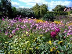 Arundel gardens Arundel Castle, The Beautiful Country, Colorful Garden, England, Gardens, Explore, Plants, Outdoor Gardens, Plant