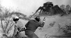 Un clásico de las películas de terror de los años 50 eran los insectos gigantes, como en Them! (La humanidad en peligro, 1954) del director Gordon Duglas. Ahora se está por filmar la historia del super héroe Ant-Man (el hombre hormiga), por lo que vendría bien una revisión evolutiva de por qué es que no existen insectos gigantes. + info: http://www.ecoapuntes.com.ar/2012/10/por-que-no-existen-insectos-de-tamano-humano/