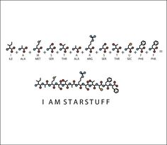 Carl Sagan tattoo idea. 'I am starstuff' spelled out in amino acid sequence.