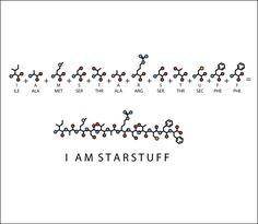 Carl Sagan tattoo idea. 'I am starstuff' spelled out in amino acid sequence.