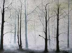 Beckie Reed paints the most wonderful trees http://beckiereed.com/