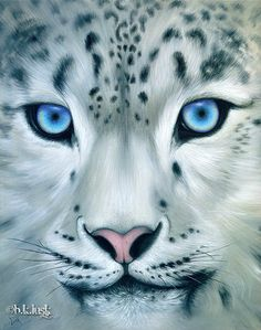 Large Original Oil Painting Snow Leopard Big Cat Kitty Animal Blue Eyes Art Lusk   eBay