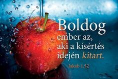 Apple Fruit, Red Apple, Biblical Quotes, Rainbow Dash, God Is Good, Love Life, Einstein, Quotations, Pray
