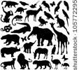Zoo animals collection - vector silhouette by Hein Nouwens, via ShutterStock