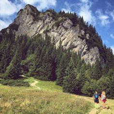 Never ending journey  #hiking #slovakia #nature #couple #couplegoals #love #happy #place #goodmood #beautiful #scenery #tattoo #tats #inked #czech #slovak #tatry #malafatra #rozsutec #zilina #zilinaboy @emmi_mini