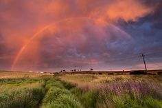 Rainbows in the northern suburbs  Definitive Light Photography