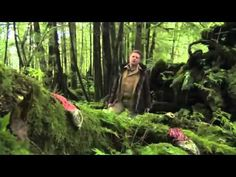 The Magical Forest (BBC Plants Documentary) - YouTube 2h 30 min
