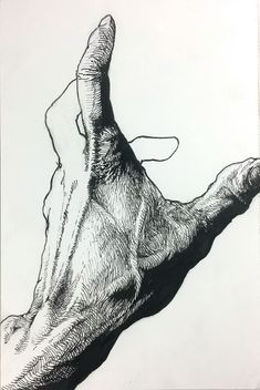 how t draw Anatomy Drawing, Anatomy Art, Art Sketches, Art Drawings, Arte Indie, Illustrator, Arte Sketchbook, A Level Art, Sketch Painting