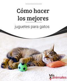 Cómo hacer los mejores juguetes para gatos - Mis animales  Si te gusta ver saltar a tu gato de felicidad, te dejamos algunos consejos para hacer los mejores juguetes para gatos, de una forma sencilla y barata.