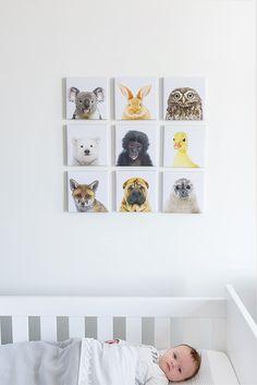 Super leuk voor op de baby kamer of kinderkamer. Negen koppen van baby dieren. Eendje, baby koala, konijntje, uiltje, baby zeehond, aapje, baby vosje