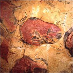 Cuevas de Altamira  (autores habitantes del paleolitico superior)  Cantabria  Spain
