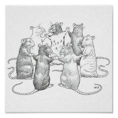 Poster for the rat lover! Size: Extra Small x Gender: unisex. Material: Value Poster Paper (Matte). Animal Drawings, Art Drawings, Rat Tattoo, Fancy Rat, Cute Rats, Monster, Drawing Sketches, Art Inspo, Character Design