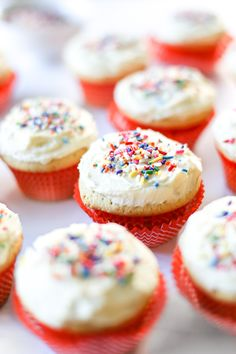 These dairy free vanilla cupcakes with vanilla buttercream frosting are a classic birthday treat complete with rainbow sprinkles. Dairy Free Cupcakes, Fun Cupcakes, Yellow Cupcakes, Birthday Cupcakes, Vanilla Buttercream Frosting, Vanilla Cupcakes, Dairy Free Options, Dairy Free Recipes, Vegan Recipes