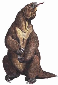 Art illustration - Prehistoric Mammals - Megatherium:  was a genus of elephant-sized ground sloths endemic to South America that lived from the Middle Pliocene[1] through the end of the Pleistocene.[2] Its size was exceeded by only a few other land mammals, including Mammoths and Paraceratherium.