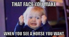 Face I make when I see a horse...period.