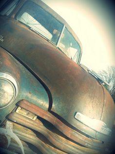 1953. Chevy. 3100.